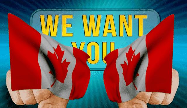 كندا تعلن عن حاجتها الى 48 ألف عامل في عدة مجالات الحصول على عقد عمل في كندا